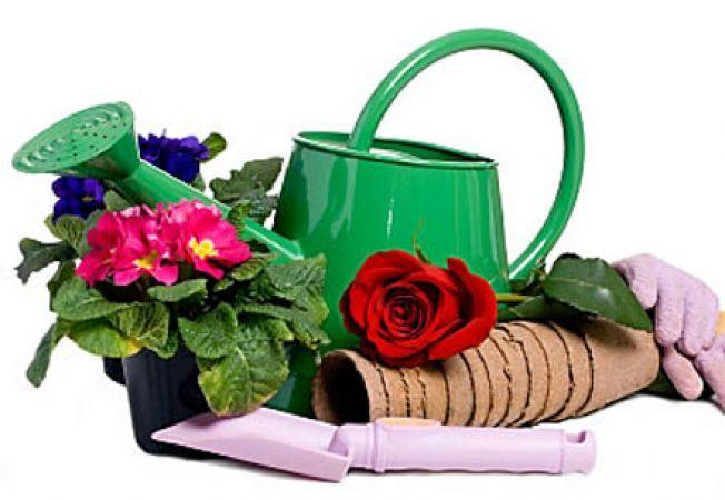 Товары для дачи и сада: на что обратить внимание