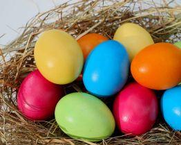 Цвет птичьих яиц зависит от окружающей температуры
